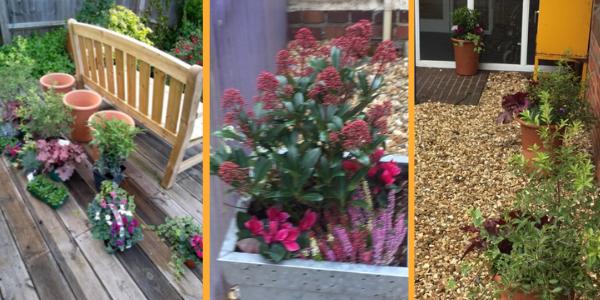 Blooming marvellous at Abingdon Community Hospital