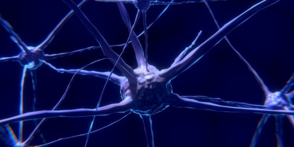 Link between calcium abnormality and bipolar disorder