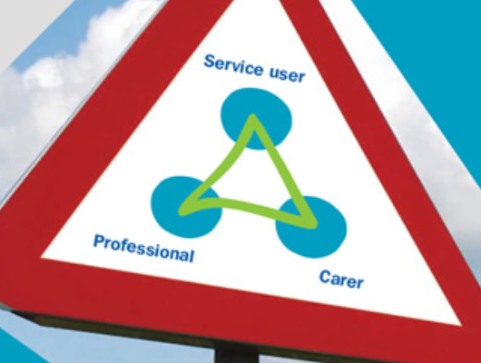 Image representing the Triangle of Care.