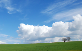 Photo of a blue sky and green field.